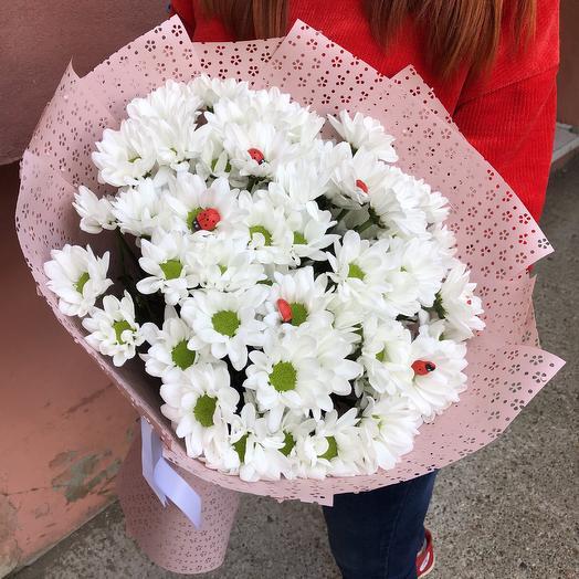 Погадай мне на ромашке🌸: букеты цветов на заказ Flowwow