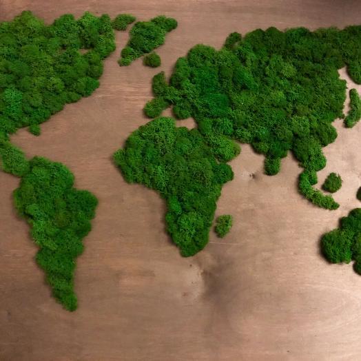 Карта мира из мха Ягель