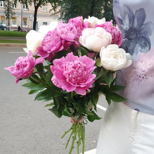 """Пионы """"Настроение лето"""" микс"""