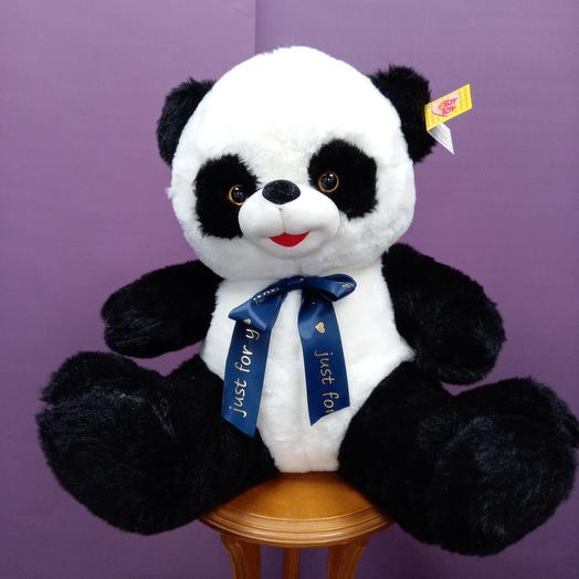 Панда средняя