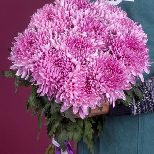 Букет из 11 фиолетовых шаровидных хризантемам