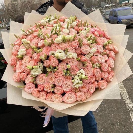 Кустовые розы  бамбастик