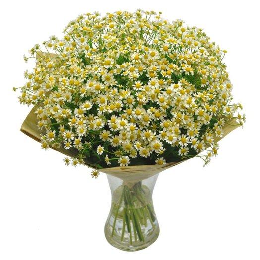 Букет Виола: букеты цветов на заказ Flowwow