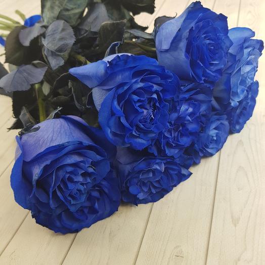 Синие небо: букеты цветов на заказ Flowwow