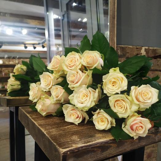 Роза пудровая 11