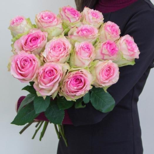 15 элитных роз Эсперанса