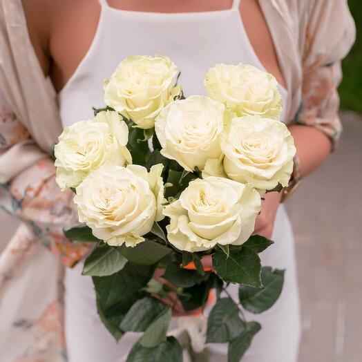 Букет 7 белых роз с лентой