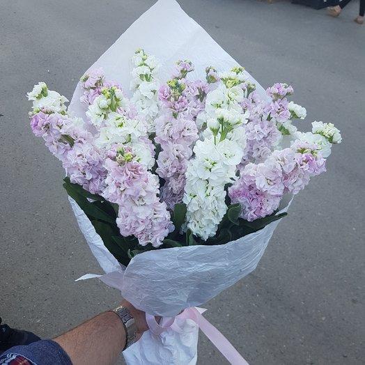 Матиолла: букеты цветов на заказ Flowwow