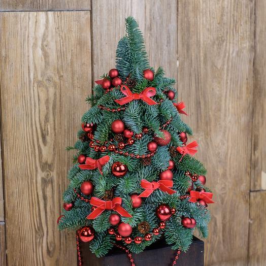 "Елка ""Рождественская"": букеты цветов на заказ Flowwow"