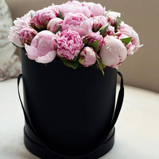 25 нежно-розовых пионов в шляпной коробке: букеты цветов на заказ Flowwow