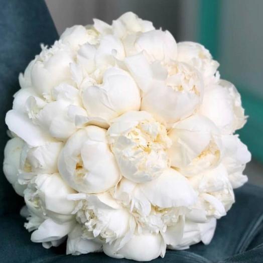 Вайт: букеты цветов на заказ Flowwow
