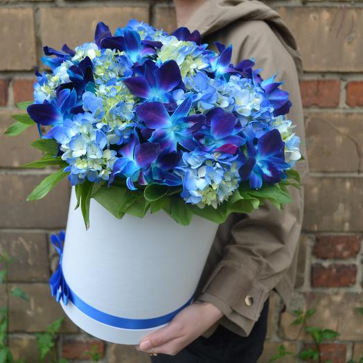 Северное сияние: букеты цветов на заказ Flowwow