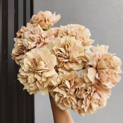 Cafe au Lait Carnations: flowers to order Flowwow