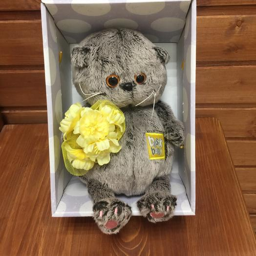 Кот Басик: букеты цветов на заказ Flowwow