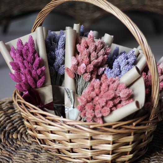 Сухоцвет Фалярис: букеты цветов на заказ Flowwow
