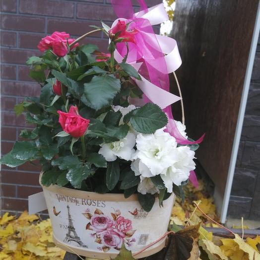 Корзинка с цветами: букеты цветов на заказ Flowwow