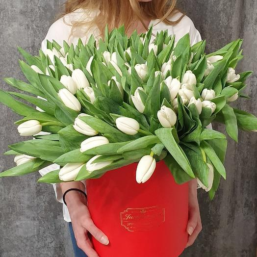 51 Tulip in the cylinder. Tenderness and passion
