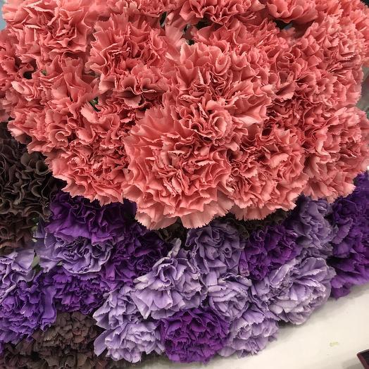 Гвоздики: букеты цветов на заказ Flowwow