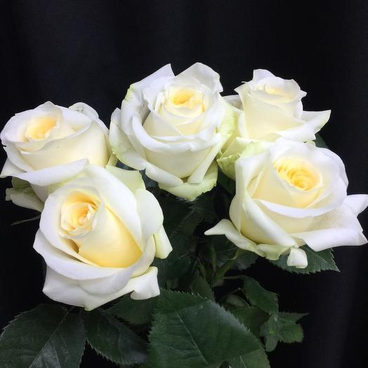Букет из пяти роз