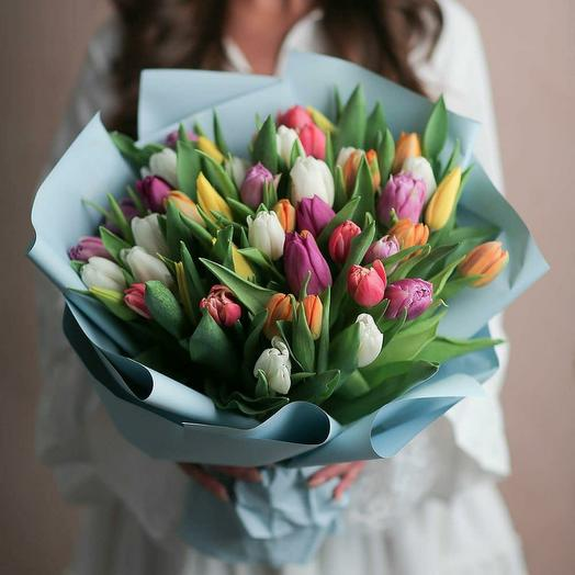 Микс из свежайших тюльпанов, 51шт