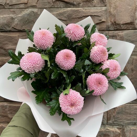 Букет из хризантемы «Шарм»