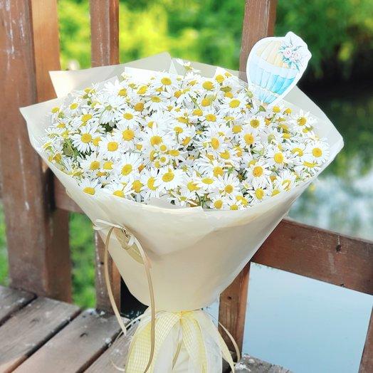 Букет ромашек.: букеты цветов на заказ Flowwow