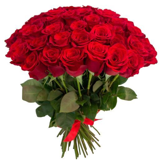 """Букет из 51 розы """"Фридом"""": букеты цветов на заказ Flowwow"""