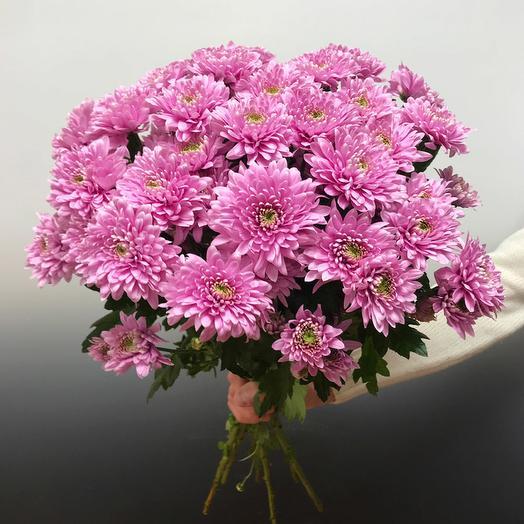 Хризантема Сиреневая: букеты цветов на заказ Flowwow