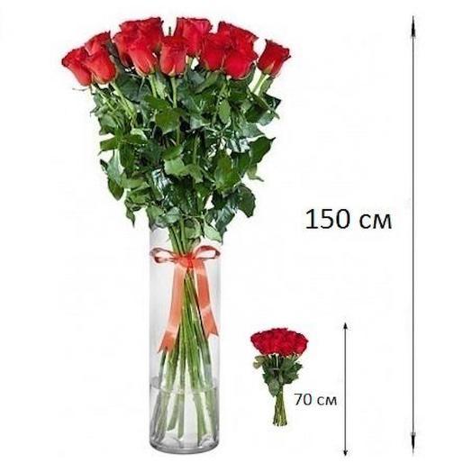Роза гигант: букеты цветов на заказ Flowwow