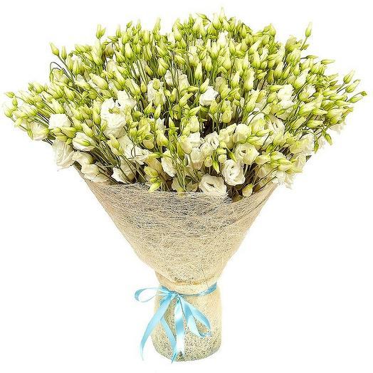"""Букет из 51 белой эустомы """"Аваланш"""": букеты цветов на заказ Flowwow"""