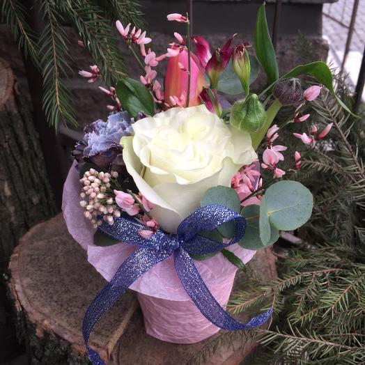 Шиммер: букеты цветов на заказ Flowwow