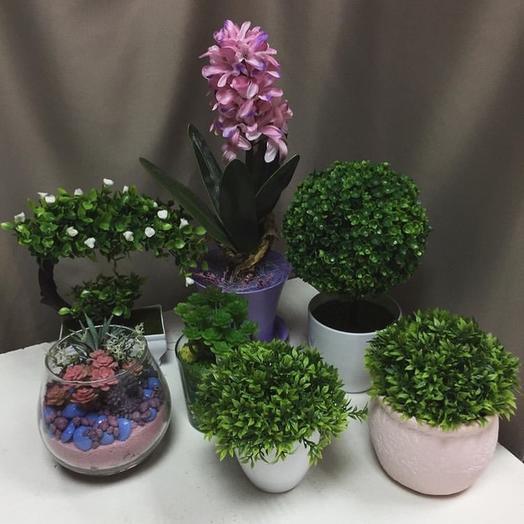 Искусственные цветы в горшках, флорариумы