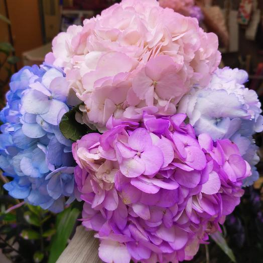 Викки: букеты цветов на заказ Flowwow