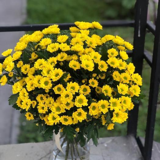 Солнечные ромашки: букеты цветов на заказ Flowwow