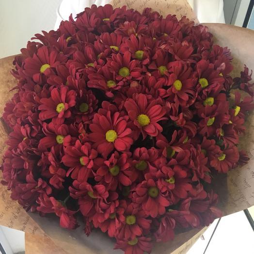 Букет из 21 красной хризантемы кустовой: букеты цветов на заказ Flowwow