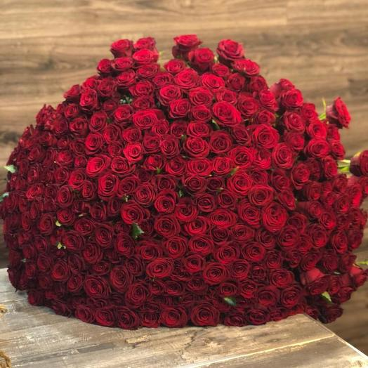 Заказ цветов, заказ цветов 251 роза