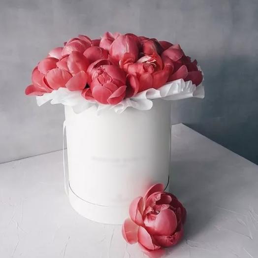 19 коралловых пионов в шляпной коробке: букеты цветов на заказ Flowwow