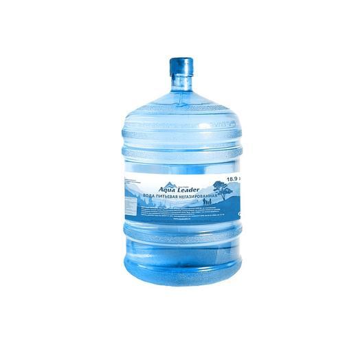 Питьевая вода Aqua Leader 19 л