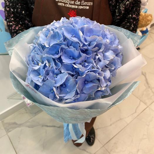 Гортензия: букеты цветов на заказ Flowwow