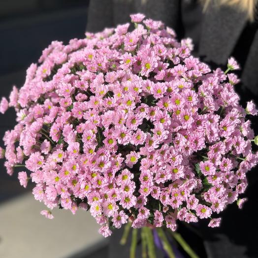 Букет из кустовых хризантем 25 шт