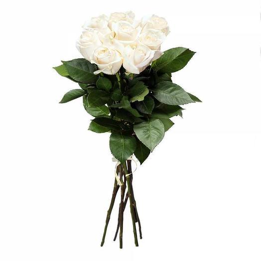 Белые розы (9 шт) с лентой