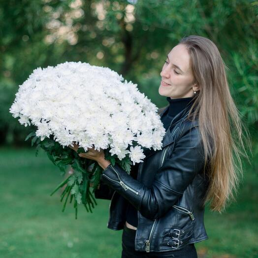 25 белых хризантем