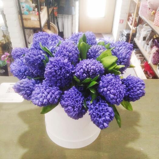 """Цветы в коробке """"25 Гиацинтов"""""""
