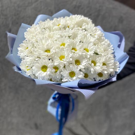 Букет 11 ромашковых кустовых хризантем Бакарди