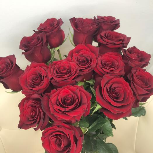 Розы 🌹