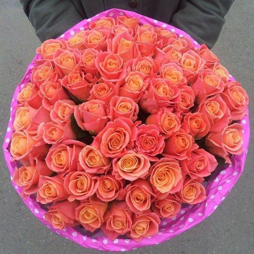 59 роз Мисс Пигги