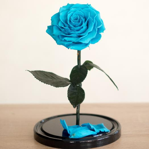 Роза в колбе Премиум бирюзовая