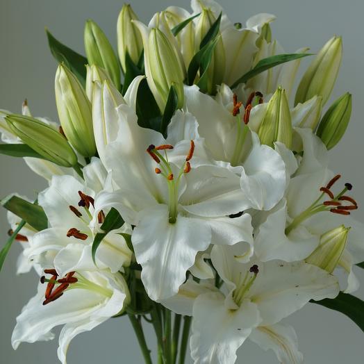 Лилейный взрыв: букеты цветов на заказ Flowwow