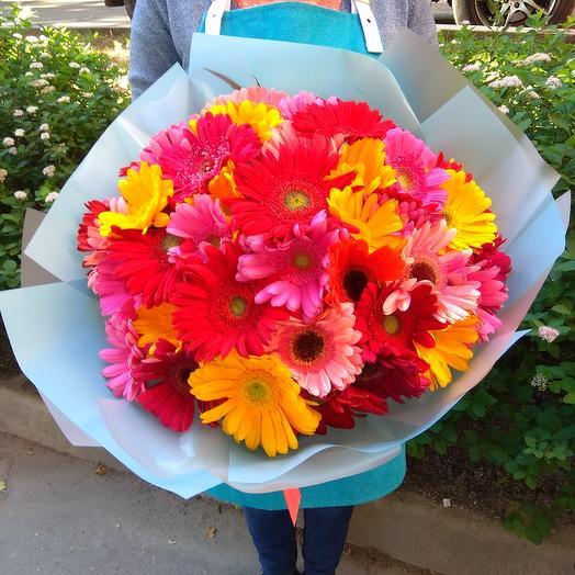51 гербера: букеты цветов на заказ Flowwow