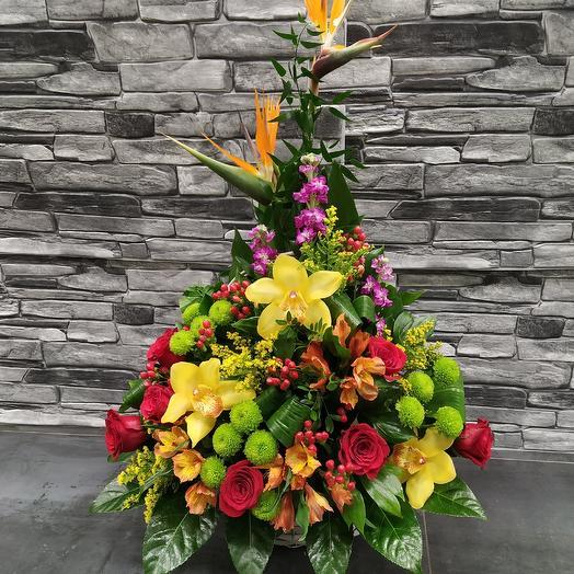"""Корзина со стрелицией """"Оранжевый бум"""": букеты цветов на заказ Flowwow"""
